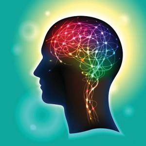 Brain-receptors-300x300